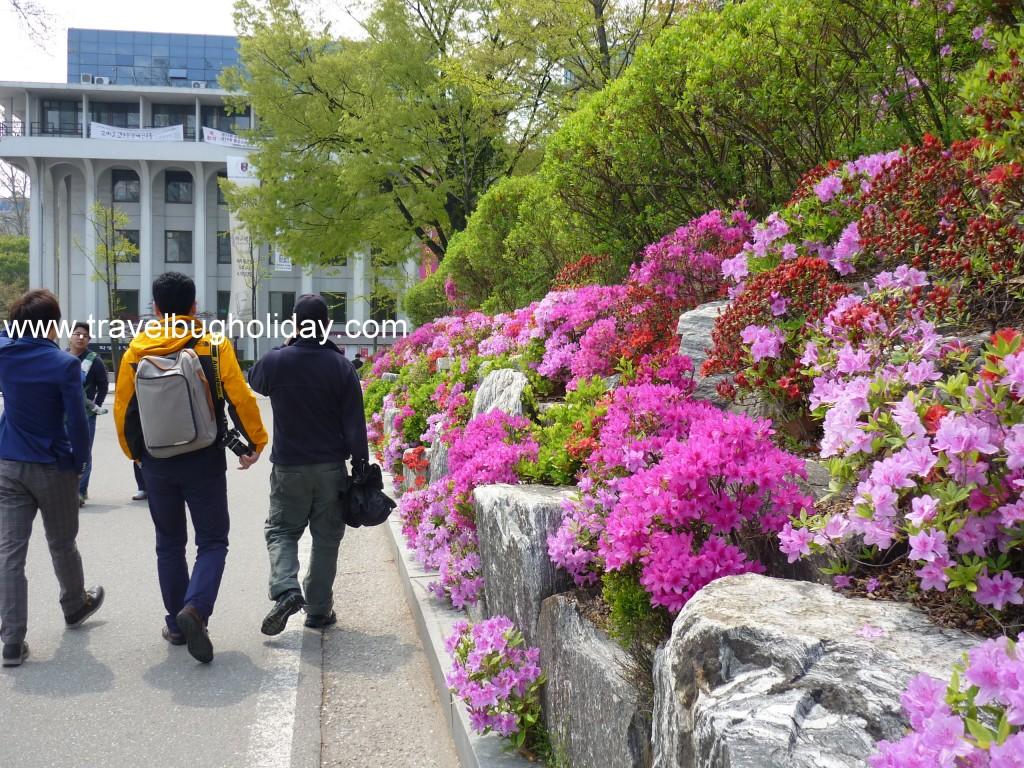 Korea University, Seoul, Korea