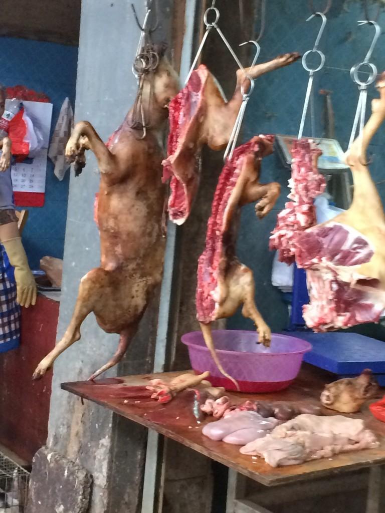 Yangshuo, China, Dog meat